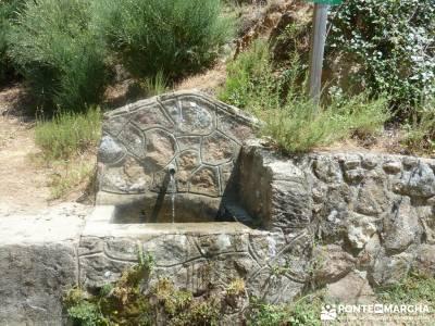 Pinares de Piedralaves;excursiones en madrid rascafria las presillas senderismo la palma